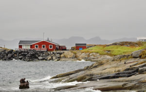 Michelle_Valberg _D4S5917 Greenland_Labrador 2013